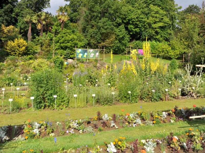 Jardins visiter en normandie d couvrez les parcs et for Au jardin conseil