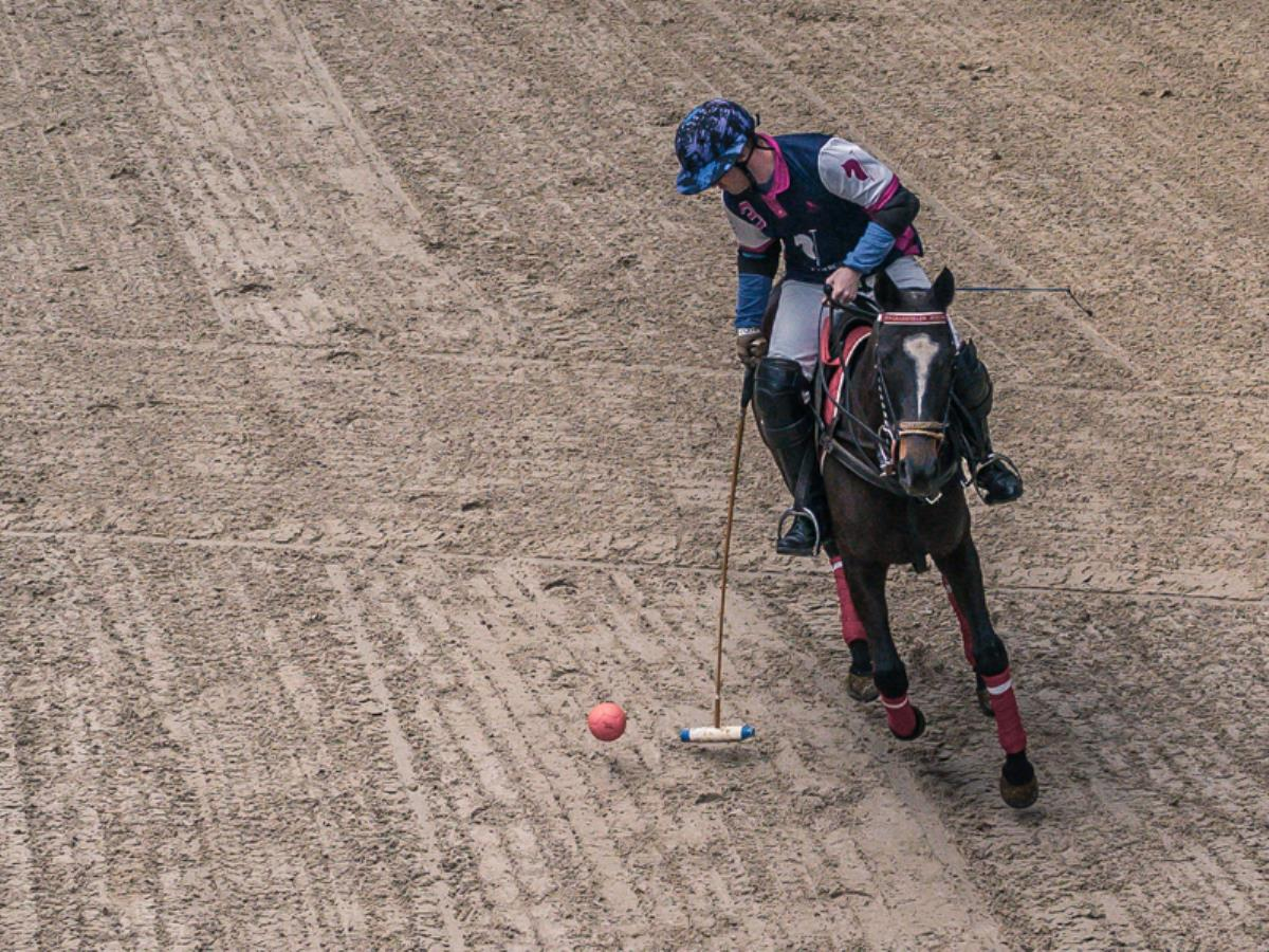 Les Equidays : Démonstrations et initiations au polo et au horse-ball