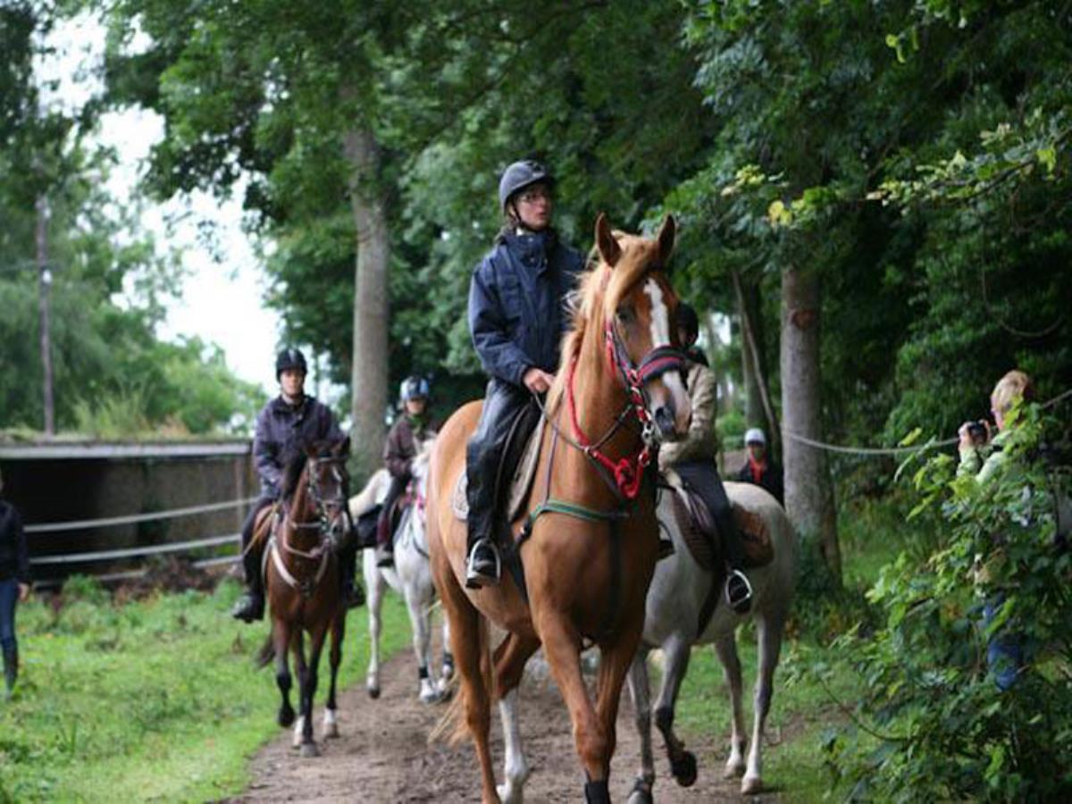 Centre Equestre de Missy