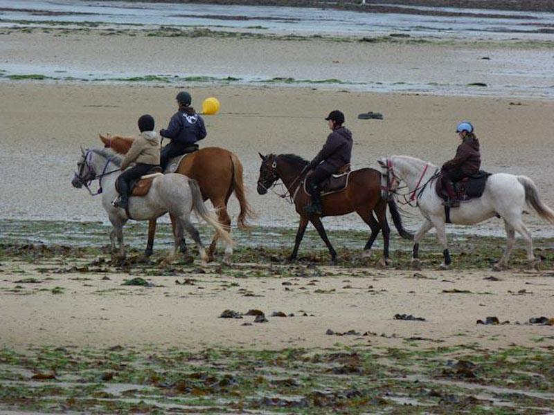 Balade cheval plage Calvados (7) - ©H. Plu