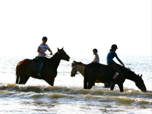 Balade cheval plage Calvados (2)