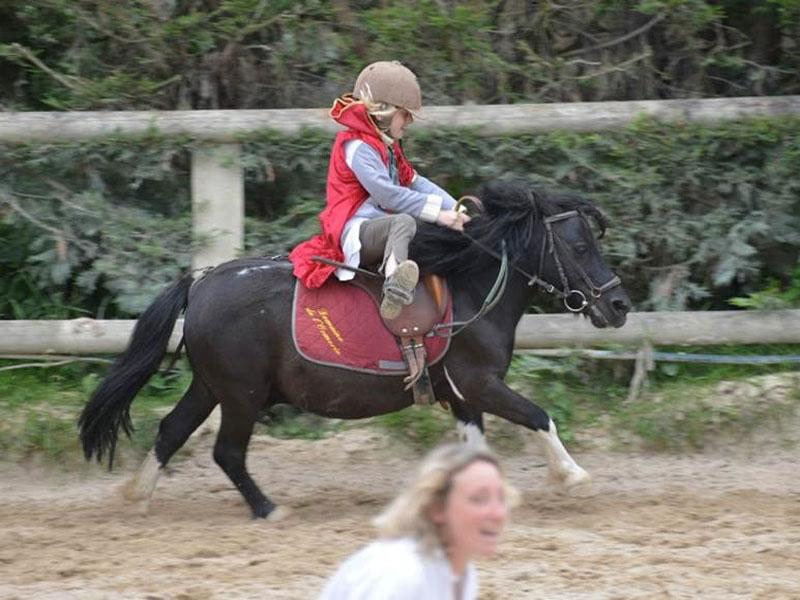 Cours poney Calvados - ©D. de Polignac