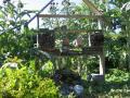 Jardin Nature des Marettes - Amblie