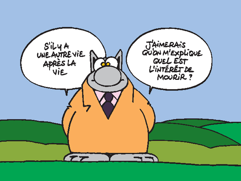 Le Chat - Geluck - ©Philippe Geluck
