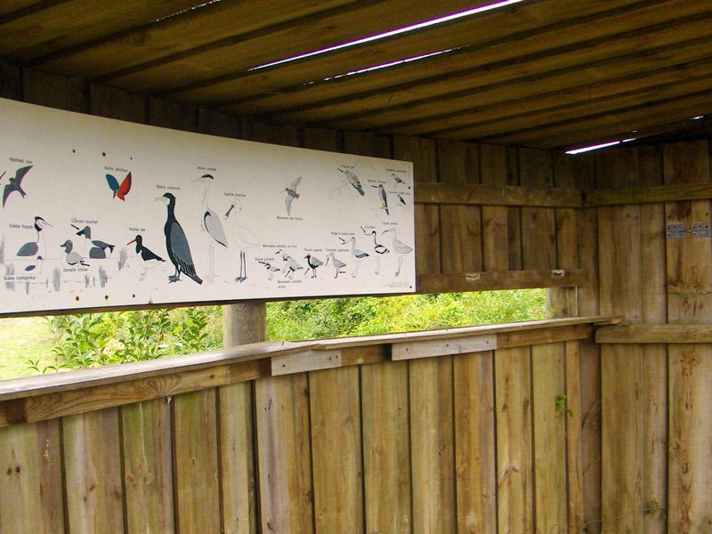 Réserve ornithologique du Gros Banc dans le Calvados - ©CPIEVDO