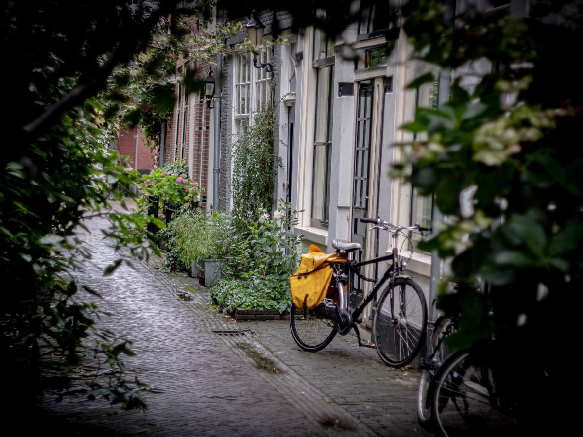 Sortie vélo : sur les traces de la nature en ville