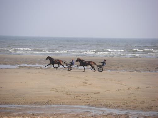 en la playa...